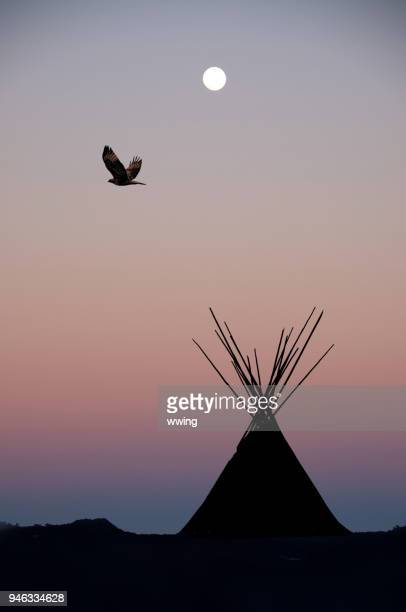teepee at sunset with full moon and hawk. - blackfoot stock pictures, royalty-free photos & images