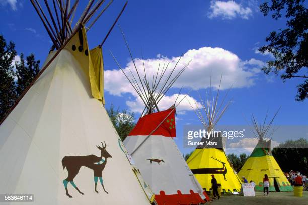 teepees at calgary stampede indian village, calgary, alberta, canada - calgary stampede stock pictures, royalty-free photos & images