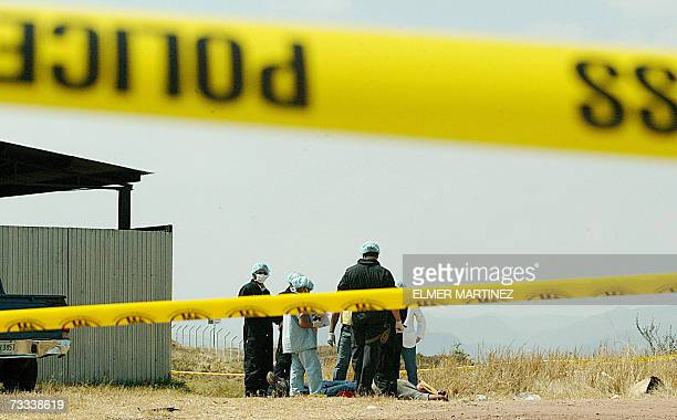 Agentes de investigacion de la Fiscalia Contra el Crimen Organizado de Honduras y policias colombianos participan de un simulacro de investigacion en...