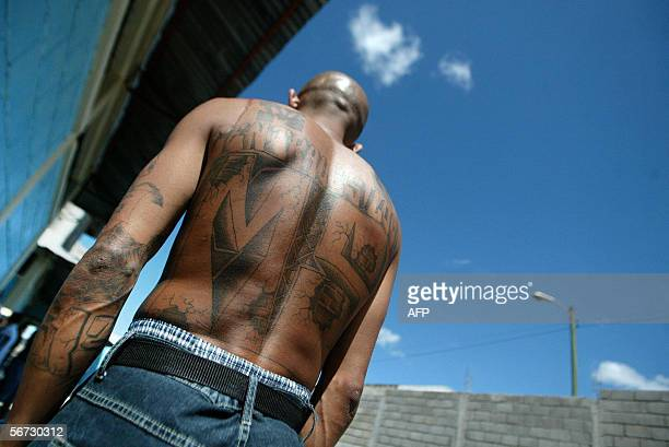 An unidentified member of the Mara Salvatrucha MS13 shows his tatoos in the unit where he is kept imprisioned in the National Penitentiary in Tamara...