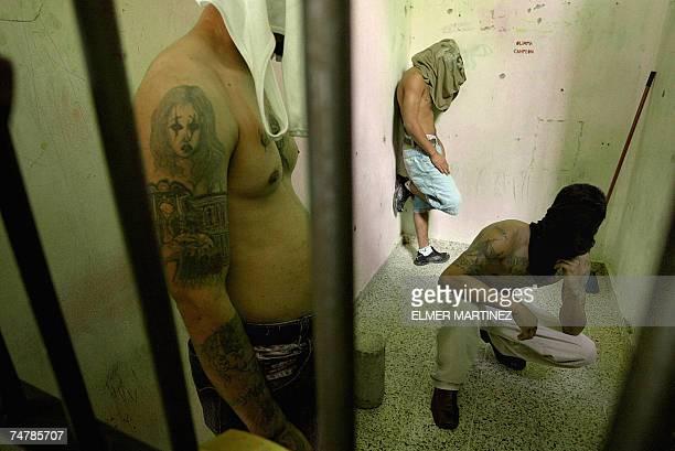 Tres presos muestran sus tatuajes dentro del modulo ''Las Leoneras'' en la Penitenciaria Nacional de Honduras 30 km al norte de Tegucigalpa el 19 de...