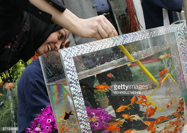 An Iranian woman tries to catch a goldfish to buy ahead of celebrations in Tehran for Persian New Year or Noruz 20 March 2006 Iranians mark Noruz...