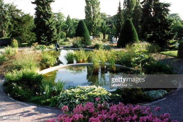 Teich Im Garten teich garten stock photos and pictures | getty images