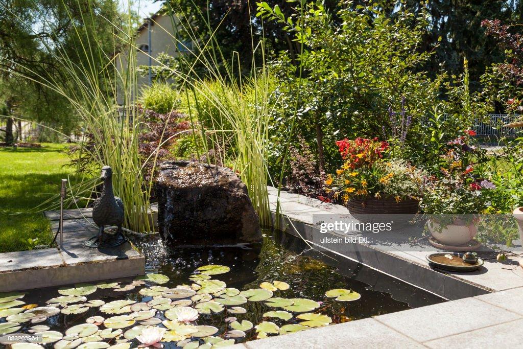 Schön Teich Im Garten