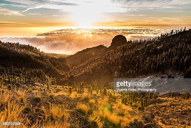 teide sea of clouds - pico de teide stock pictures, royalty-free photos & images