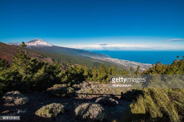 teide volcano on tenerife, canary islands, spain - pico de teide stock pictures, royalty-free photos & images