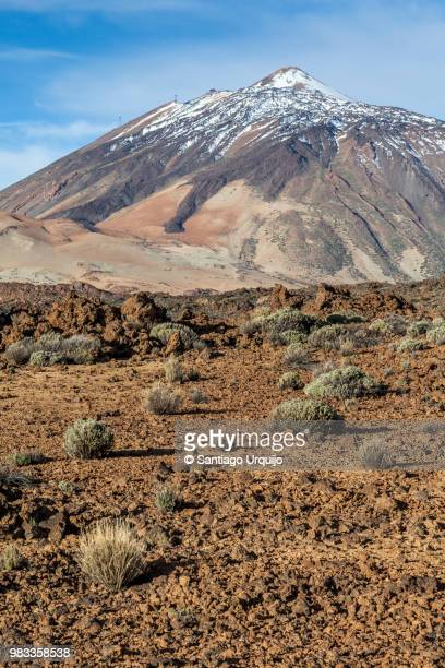 teide volcano - pico de teide stock pictures, royalty-free photos & images