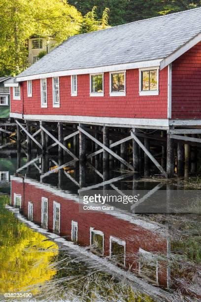 telegraph cove resort, telegraph cove, vancouver island - gordelroos stockfoto's en -beelden