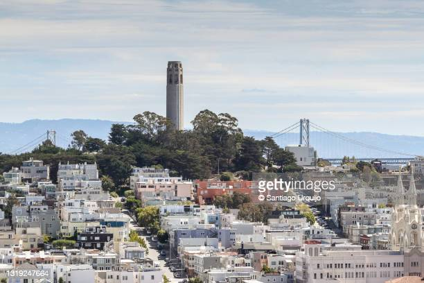 telegraph hill with coit tower - north beach san francisco stock pictures, royalty-free photos & images