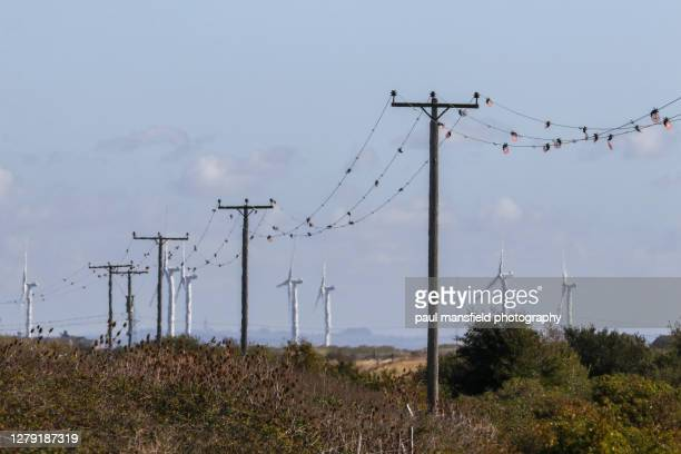 telegraph poles and wind turbines - heatwave stock pictures, royalty-free photos & images