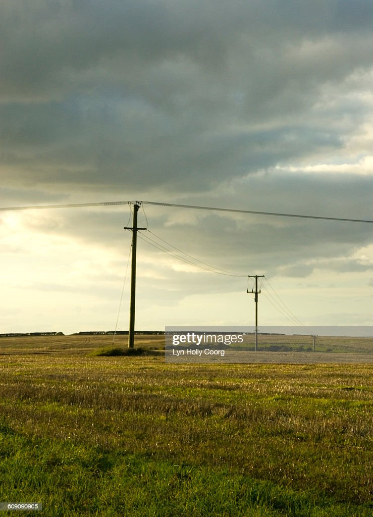 Telegraph poles in field and cloudy sky : ストックフォト