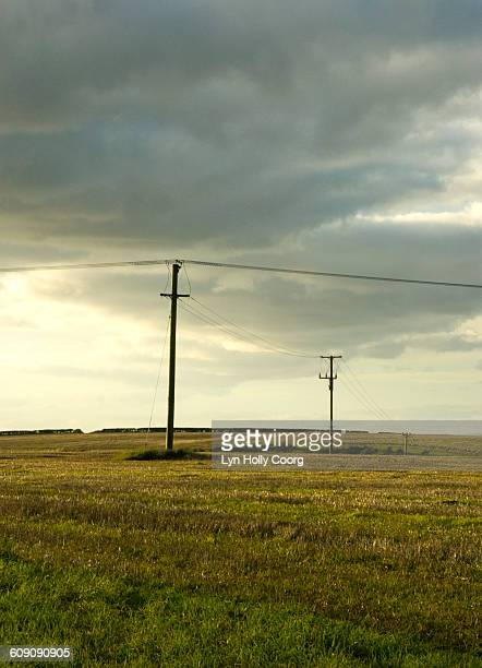 telegraph poles in field and cloudy sky - lyn holly coorg stock pictures, royalty-free photos & images