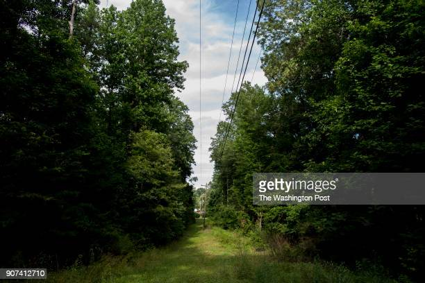 Telephone and electrical lines run through Nathan Grayson's property on June 24 2017 in Haymarket Virginia Nathan Grayson is concerned Dominion power...