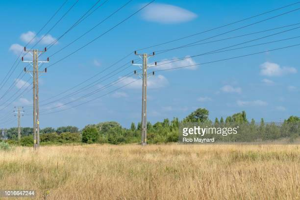 Telephone lines at the field