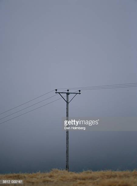 Telephone Pole in Mist