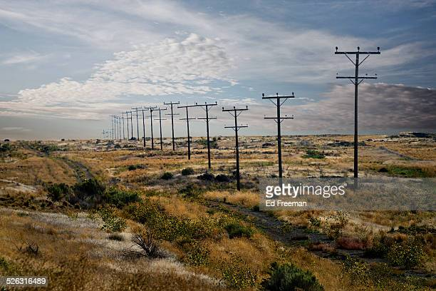 Telephone Poles, Nevada Countryside