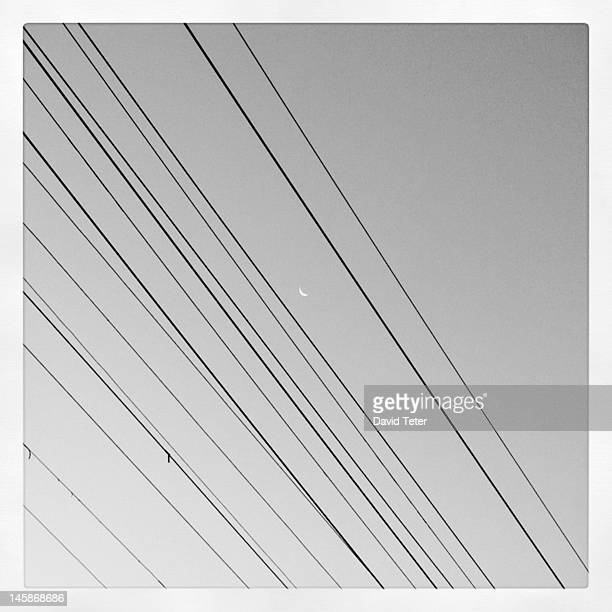 Telephone wires