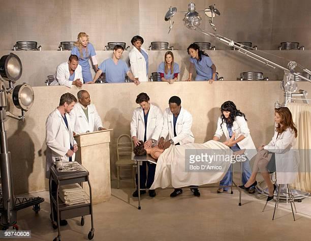 S ANATOMY ABC Television Network's 'Grey's Anatomy' stars Justin Chambers as Alex Karev Katherine Heigl as Isobel 'Izzie' Stevens TR Knight as George...