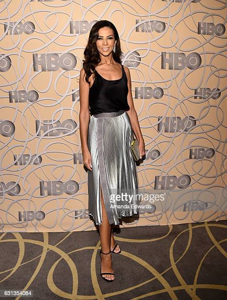 Television personality Terri Seymour arrives at HBO's Official Golden Globe Awards After Party at Circa 55 Restaurant on January 8 2017 in Los...