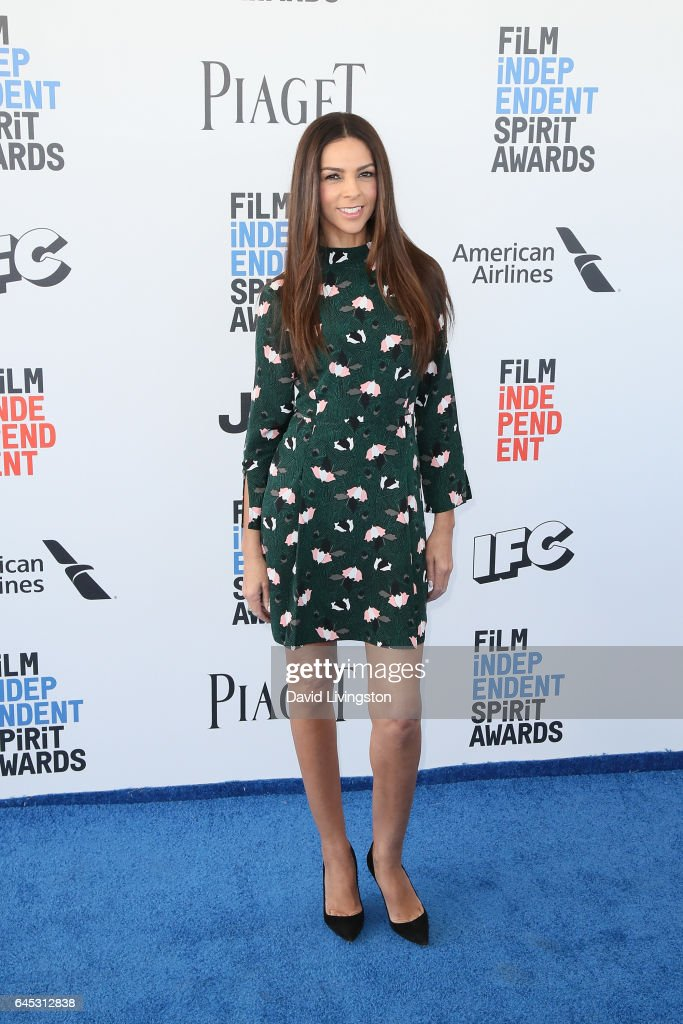 Television presenter Terri Seymour attends the 2017 Film Independent Spirit Awards on February 25, 2017 in Santa Monica, California.