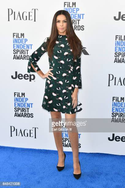 Television Presenter Terri Seymour attends the 2017 Film Independent Spirit Awards on February 25 2017 in Santa Monica California