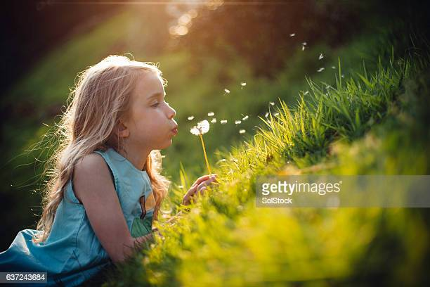 telling the time with dandelions - innocence stock pictures, royalty-free photos & images