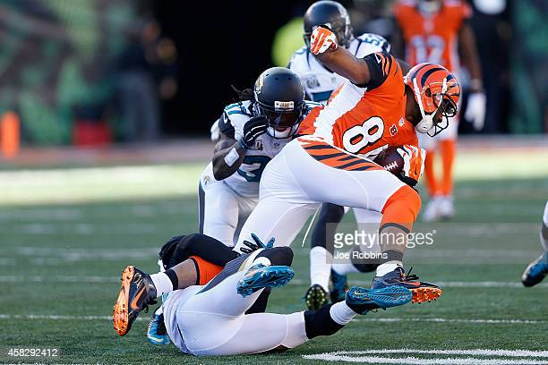 Telvin Smith of the Jacksonville Jaguars and Tommie Campbell of the Jacksonville Jaguars attempt to tackle Jermaine Gresham of the Cincinnati Bengals...