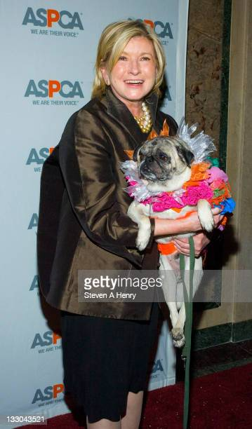 Telvision personality Martha Stewart attends the 12th annual ASPCA Bergh Ball at the Plaza Hotel on April 23 2009 in New York City