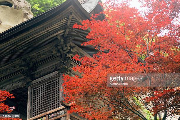 Temple at Yamadera with red autumn tree in the foreground