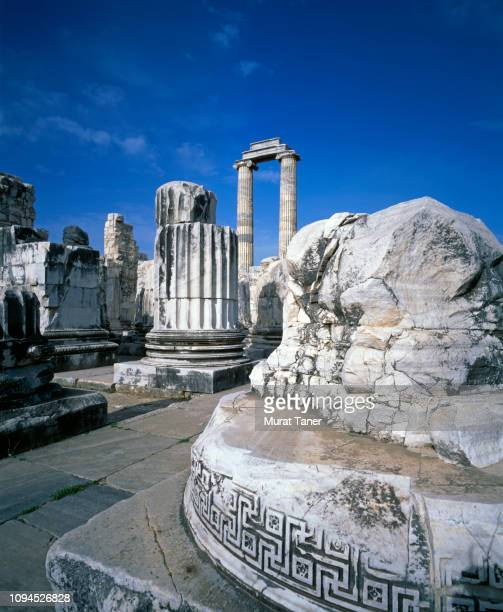 temple of apollo in didim - ancient greece photos stock pictures, royalty-free photos & images