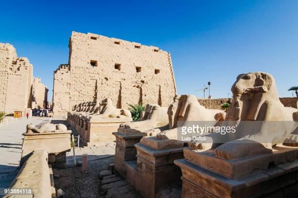 temple of karnak - karnak fotografías e imágenes de stock