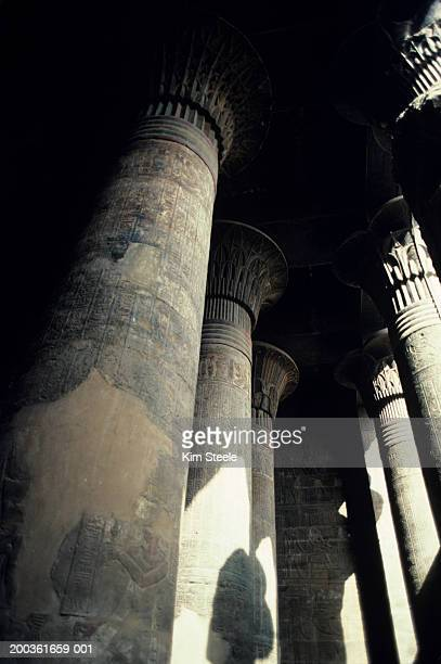 Temple of Khnum built by Ptolemies; 24 columns, 16 capitals, low angle view