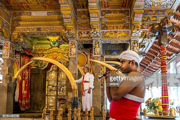 temple of the tooth, horn player kandy, sri lanka - kandy kandy district sri lanka stock pictures, royalty-free photos & images