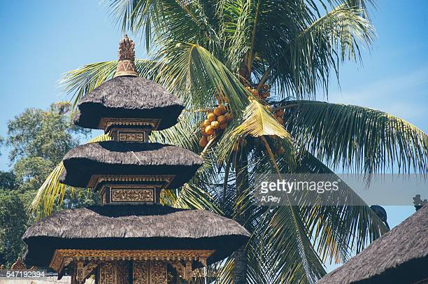 Temple roof with palm