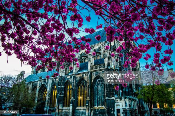 temple saint eloi - saint eloi stock pictures, royalty-free photos & images