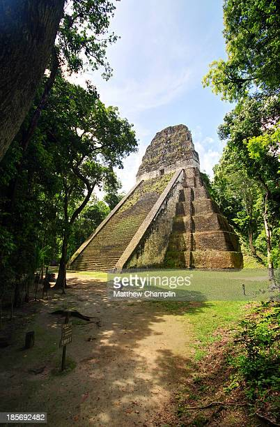 CONTENT] Temple V towers out of the jungle in one of the plazas in Tikal Guatemala