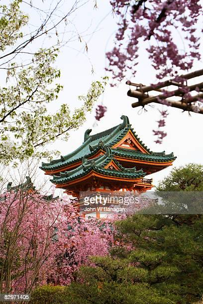 temple with cherry blossom - kyoto city stock pictures, royalty-free photos & images