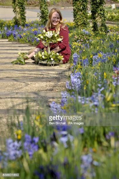 Temporary Display Supervisor Emma Ball sits next to hyacinths and daffodils as she makes a 10th birthday celebration cake from flowers picked at the...