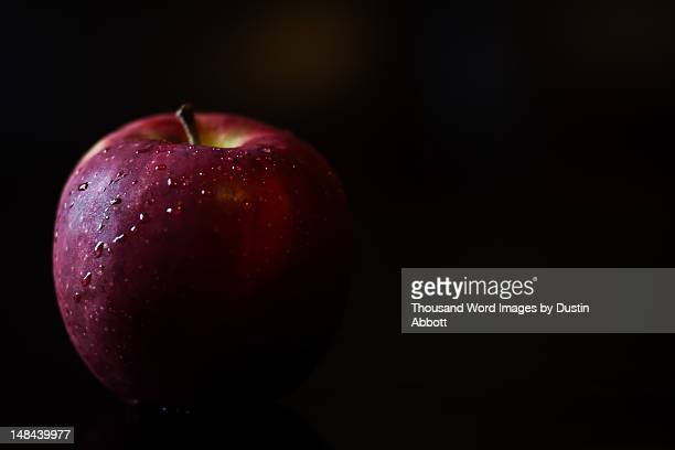 temptation - dustin abbott stock pictures, royalty-free photos & images