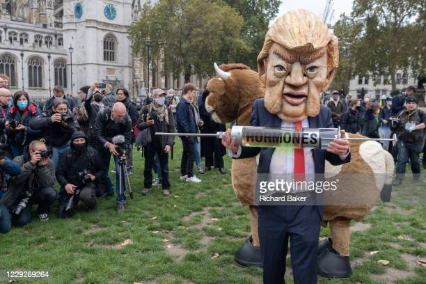 Ten days ahead of the US Presidential elections, a Donald Trump lookalike holds a symbolic syringe containing the hormones that protesters say will...