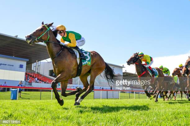 Ten Nuggets ridden by Daniel Moor wins the IGA Liquor has Christmas Sorted BM58 Handicap at Geelong Racecourse on December 14 2017 in Geelong...