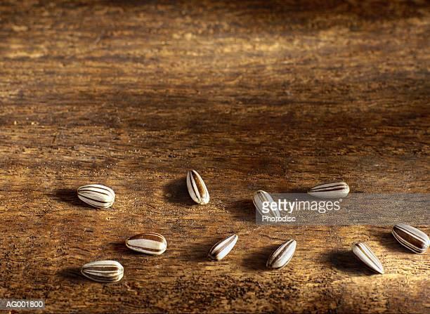 Ten Sunflower Seeds