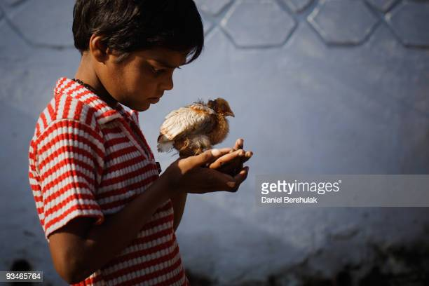 Ten year old Nawab Mian suffering from mental illness related to the 1984 Bhopal gas disaster plays with a small chick near the site of the deserted...