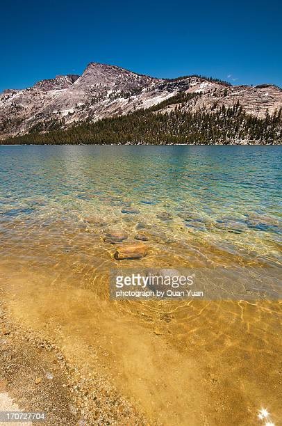 tenaya lake - yuan quan stock pictures, royalty-free photos & images