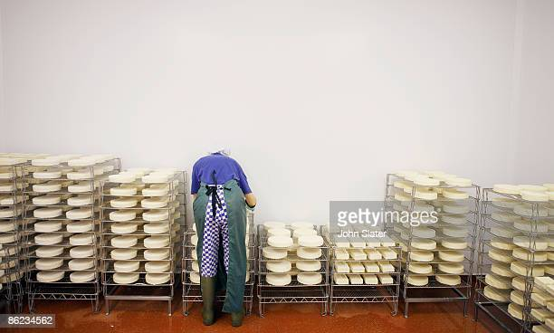 tending organic maturing cheeses in coolroom