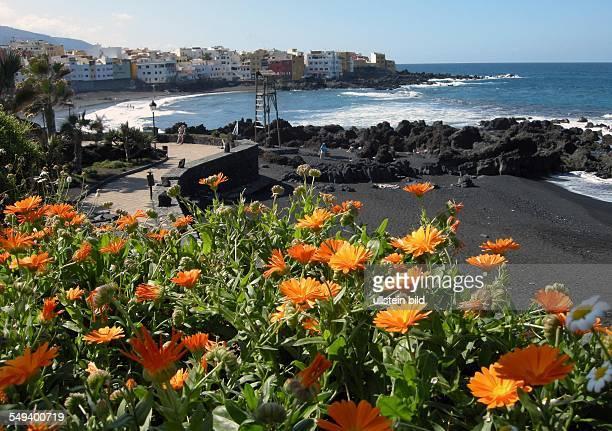 Teneriffa Puerto de la Cruz Playa Jardin