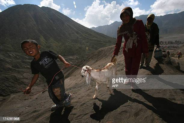 Tengger tribe devotees belonging to Indonesia's Hindu minority prepare to throw an offering of a live goat to the active crater of Mount Bromo...