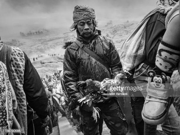 A Tenggerese carries chickens as offerings during the Yadnya Kasada Festival at crater of Mount Bromo on July 18 2019 in Probolinggo Java Indonesia...
