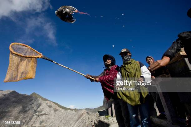 Tenggerese worshipper throws a chicken offering during the Yadnya Kasada Festival at crater of Mount Bromo on August 26 2010 in Probolinggo East Java...