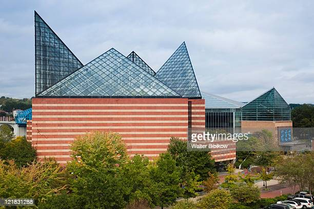 tennessee aquarium, chattanooga, tennessee, usa - chattanooga stock pictures, royalty-free photos & images